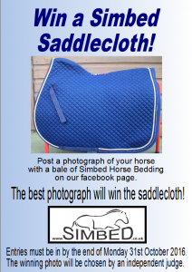 saddlecloth-comp-2016